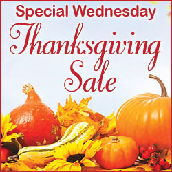 Special Thanksgiving Sale!